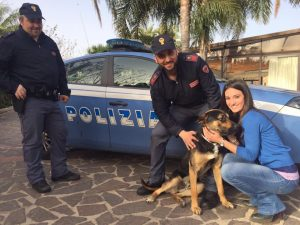 Palermo, picchiato e morso dal suo ex padrone: cucciolo salvato dalla polizia