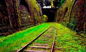Greenway Palermo-Monreale, commissione sceglie due progetti