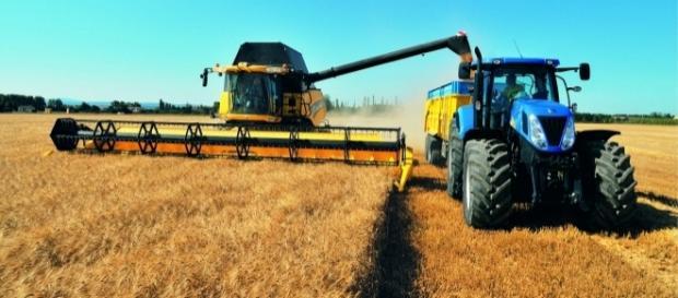"""Bando Biologico, M5S: """"Regione anticipi quanto spetta agli agricoltori"""""""