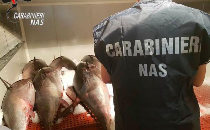 Catania, sequestrati 2.200 kg di tonno: denunciati 5 titolari di aziende ittiche