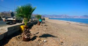Aspra, scoperti 5 scarichi anomali nel canalone sulla spiagga della Playa