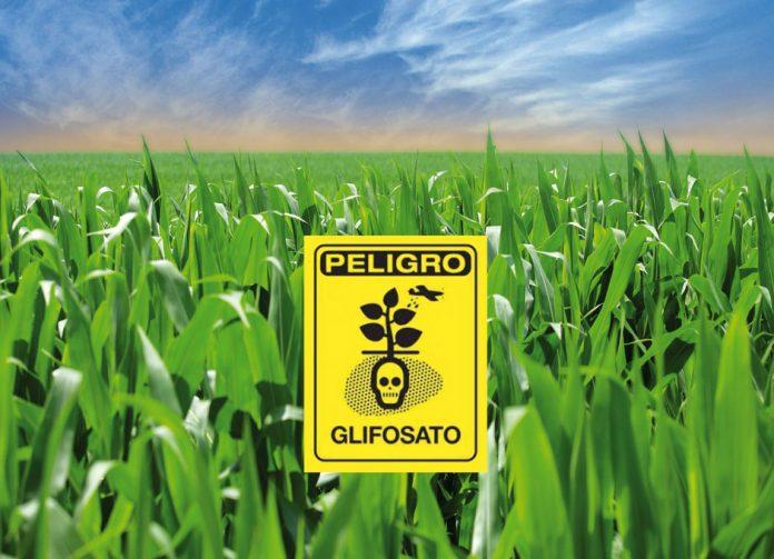Glifosato in agricoltura, da M5S un tavolo nazionale di coordinamento