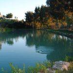 Pesca, Sicilia protagonista al Salone internazionale Acquafarm