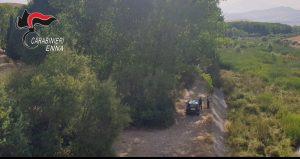 Incendi, allevatori appiccano fuoco sui Nebrodi. Arrestati due piromani